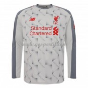 maillot de foot Premier League Liverpool 2018-19 maillot third manche longue..