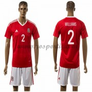 maillot de foot équipe nationale Pays de Galles 2016 Williams 2 maillot domicile..