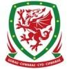 Maillot Pays de Galles